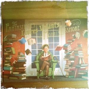 livres volant couverture