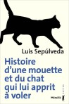sepulveda chat mouette