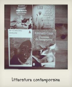 achat livres juin 2013 littérature contemporaine