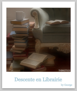 descentes en librairie 2