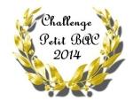 challenge petit bac 2014