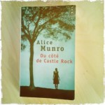munro castle rock