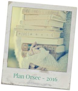 photo libre plan orsec (2)