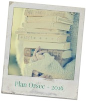photo libre plan orsec (2)